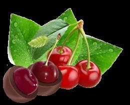 Вишня в нежном вишневом соке в темном шоколаде